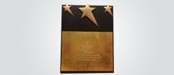 Channel Partner of the Year 2013